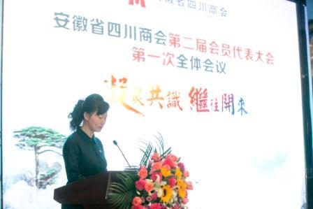 侯晓健,女,现任安徽省四川乐虎国际登陆常务副会长,重庆兴茂产业发展(集团)有限公司。